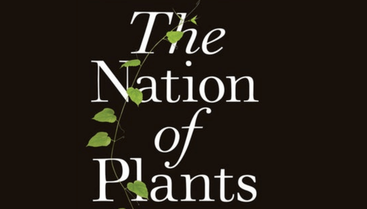 The dark side of the houseplant boom